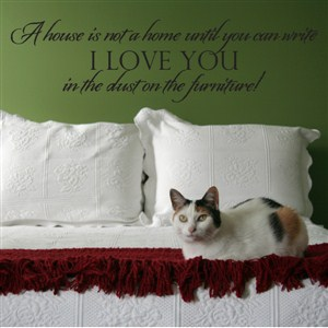 A house is not a home until you can write I love you in the dust - Vinyl Wall Decal - Wall Quote - Wall Decor